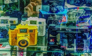 Blue Moon Camera's Holga Selection