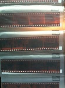 Actual Film Strips, Portra 400 by Jennifer Hartnett-Henderson ©2013