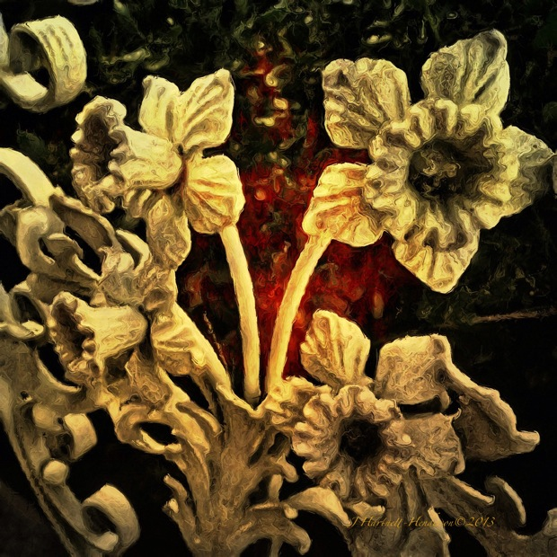 Iron Daffodils by Jennifer Hartnett-Henderson ©2013