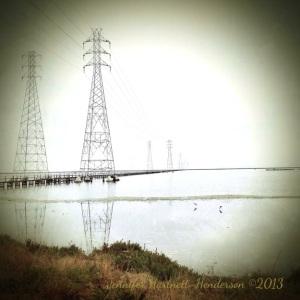 Morning on the San Francisco Bay with Sandpipers by Jennifer Hartnett-Henderson ©2013