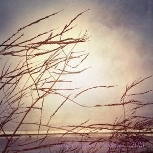 Morning on the Bay by Jennifer Hartnett-Henderson ©2013