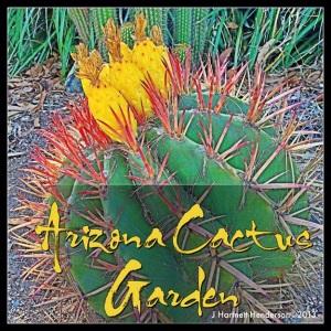 Arizona Cactus Garden at Stanford by Jennifer Hartnett-Henderson ©2013
