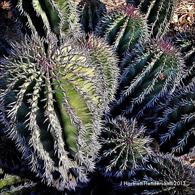 Purple Spined Cactus by Jennifer Hartnett-Henderson ©2013