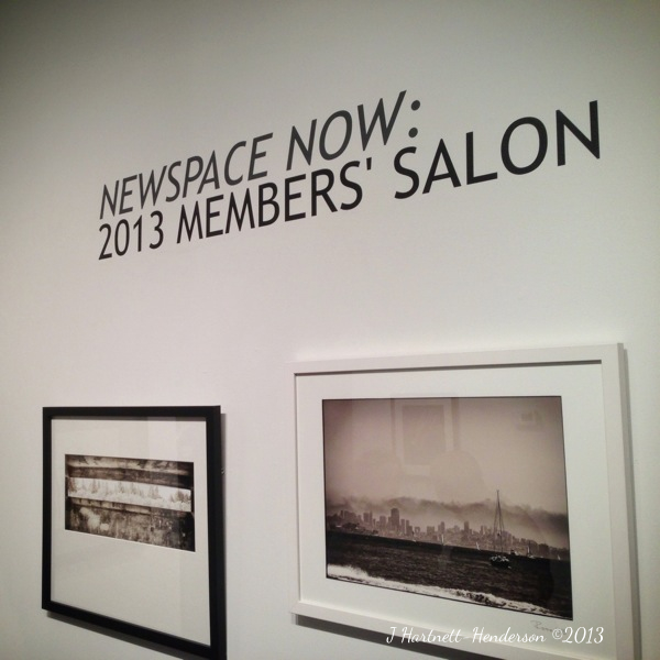 Newspace Now: 2013 Members' Salon