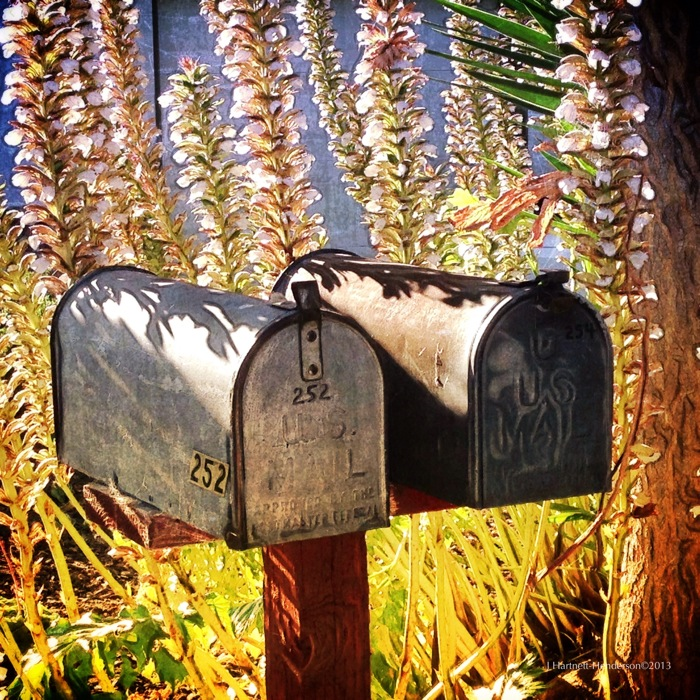Mail at 252 - a Redux © Jennifer Hartnett-Henderson