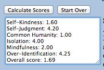 Self Compassion Scores
