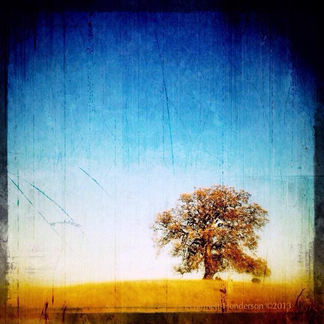 Standing the Tests of Time by Jennifer Hartnett-Henderson ©2013