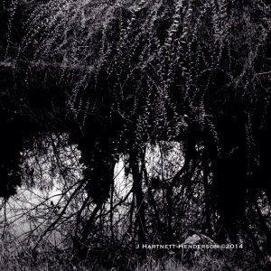Where Above and Below Collide by Jennifer Hartnett-Henderson ©2014