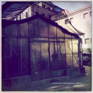 Grimy Greenhouse by Jennifer Hartnett-Henderson ©2014
