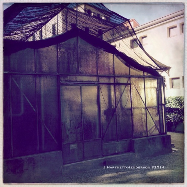 Grimy Greenhouse by Jennifer Hartnett-Henderson ©2014