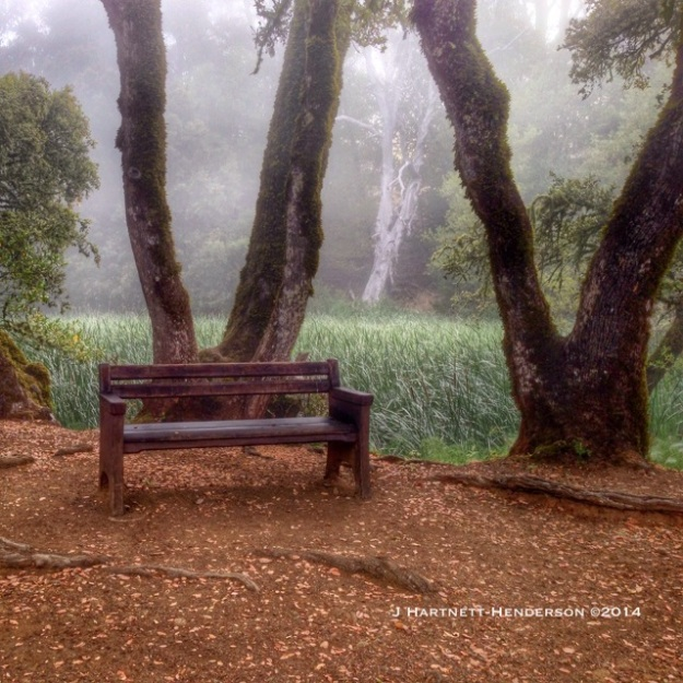 A Place to Rest by Jennifer Hartnett-Henderson ©2014