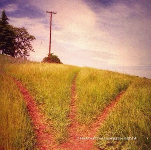 Fork in the Road by Jennifer Hartnett-Henderson ©2014