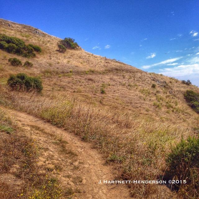 Anniversary Trail by Jennifer Hartnett-Henderson ©2015