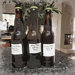 Beer Bottles for Web