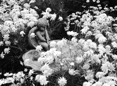 Angel in flowers001_2_B&W PhotographicforWeb