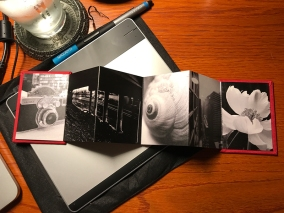 Mpix Mini Accordion Book Interior 1 by Jennifer Hartnett-Henderson ©2018